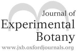 jxb_logo400